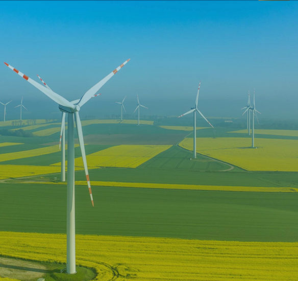 Projects - Your Preferred Partner in the Wind Industri